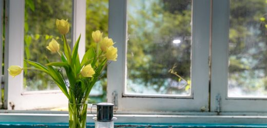Insight On Replacement Windows – Which Ones To Go With